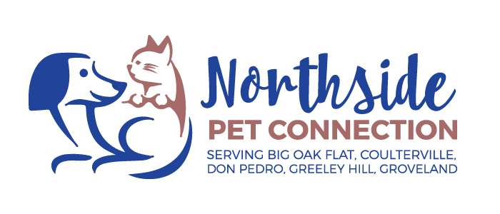 Northside Pet Connection Logo Design by BullzeyeDesign.com