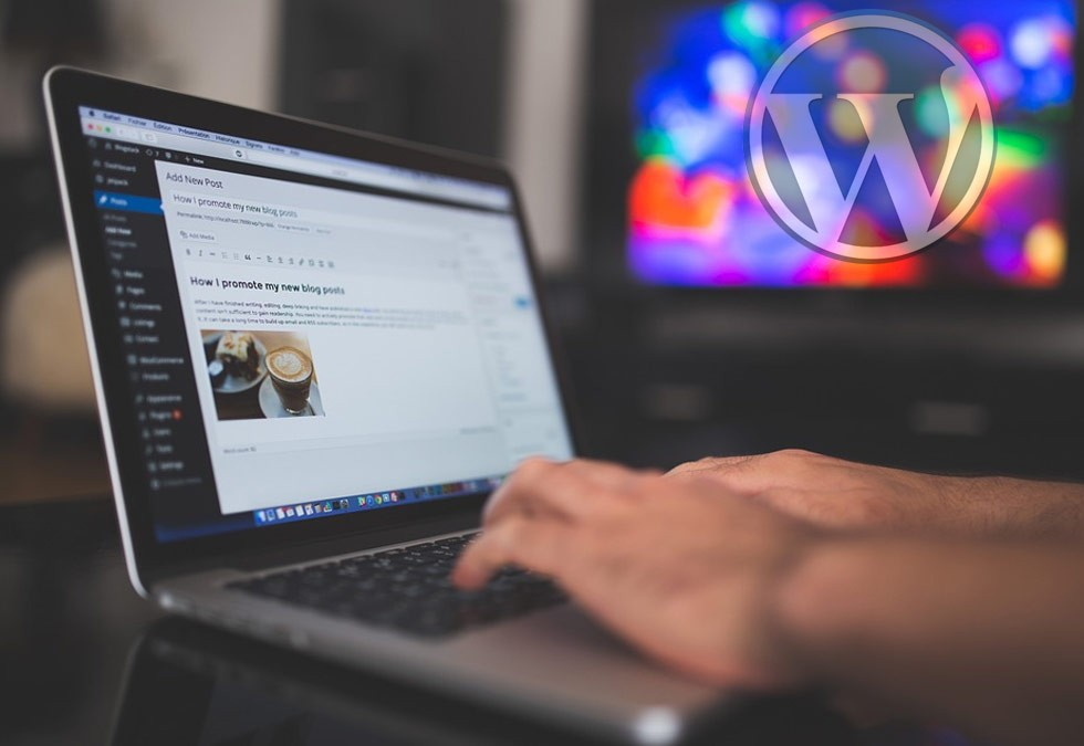 What is WordPress CMS and Why We Use It